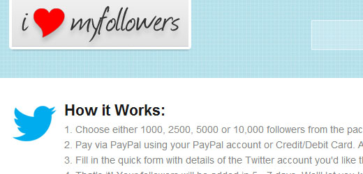 Fake Twitter/Facebook Followers; Pro's and Con's